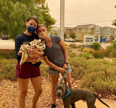 Happy pets and people at Santa Cruz County Animal Shelter!