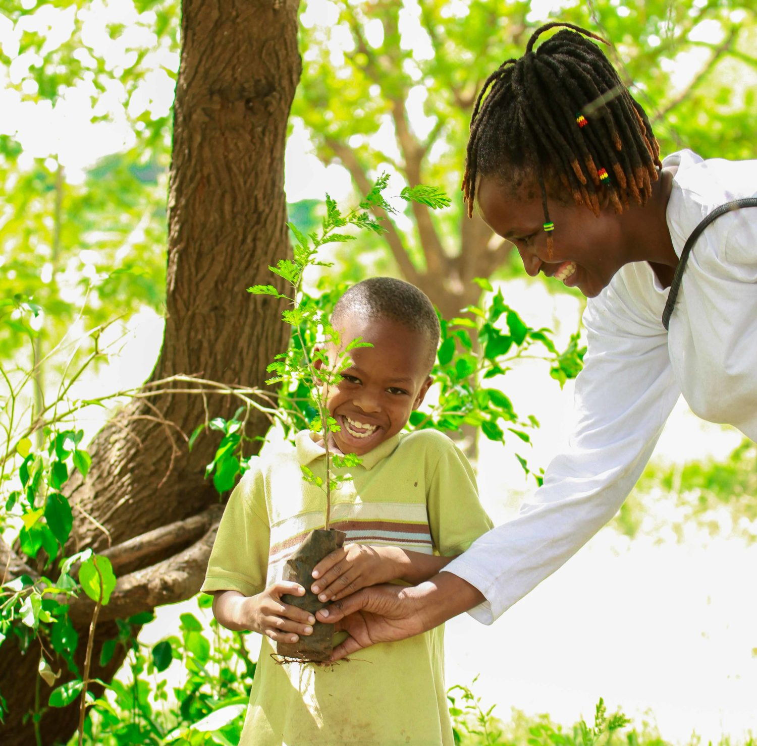 creating a healthier earth by planting trees