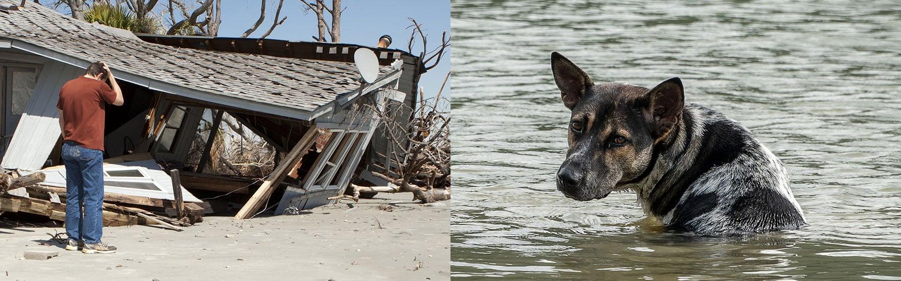 disaster-hurricaneida-impactupdates-header-image