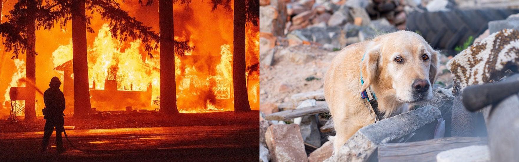 disaster-wildfire-impactupdates-header-image