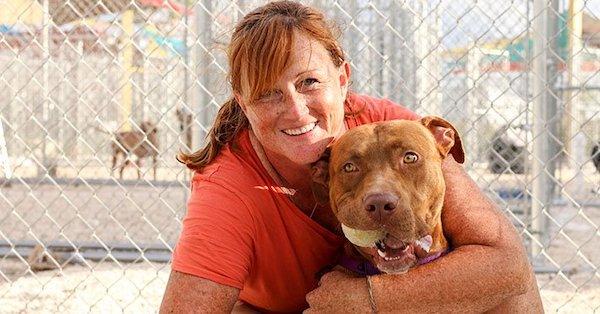 "Florida Keys SPCA; The ""Key"" to Rebuilding"