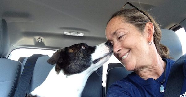 Ginger's Journey from Shelter to Service
