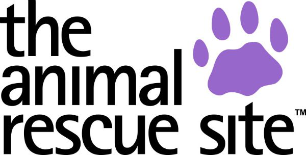 13 Unique Animals to Celebrate 13 Years of The Animal Rescue Site