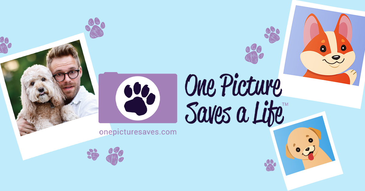 One Picture Saves a Life Contest Chooses Finalists