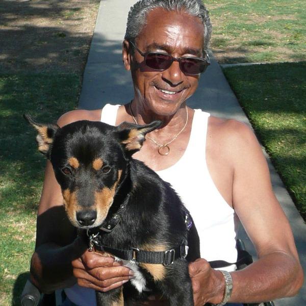 Shelter Dogs Help Heal Veterans