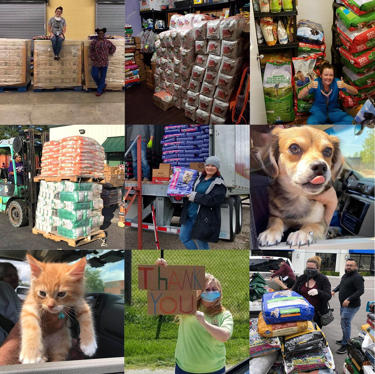 covid-19-pet-food-supplies-distribution-collage-grid-2