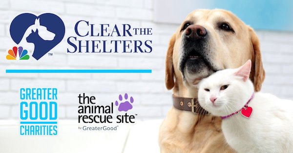 Clear the Shelters 2021 Takes Flight